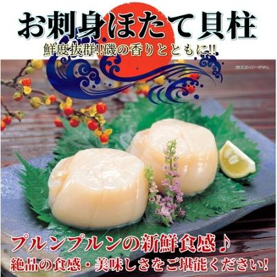 お刺身ほたて貝柱(500g)