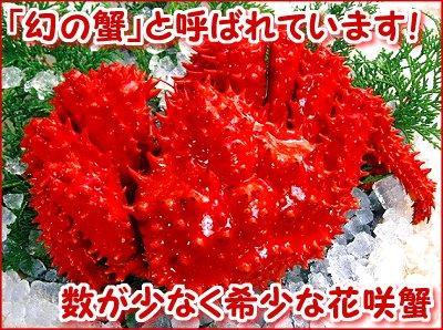 花咲がに姿<br>1尾・約1kg(ボイル冷凍)