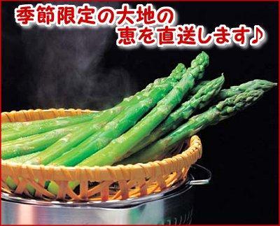 【産直】朝採りグリーンアスパラ 1.8kg