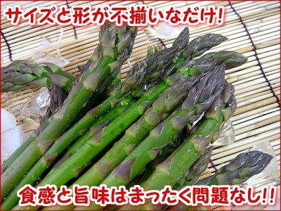 【産直】訳ありグリーンアスパラ 約1kg