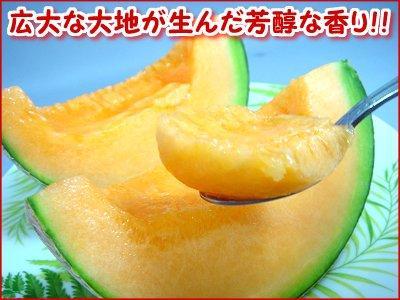 富良野赤肉メロン( 約1.3~1.5kg×2玉・産直)