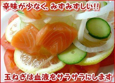 【産直】サラダ玉ねぎ 約10�s