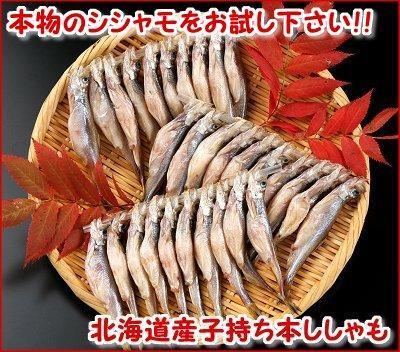 北海道産子持ち本ししゃも(30尾入)