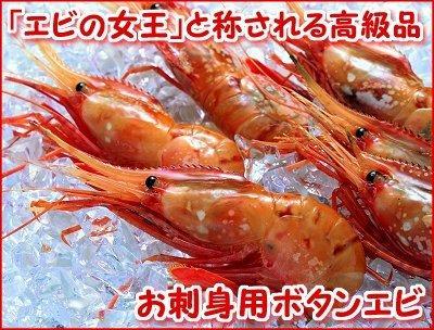 お刺身ぼたんえび(500g)