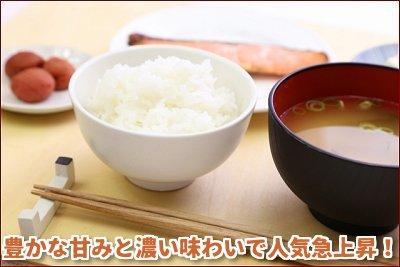 【産直】北海道米「ゆめぴりか」 10kg