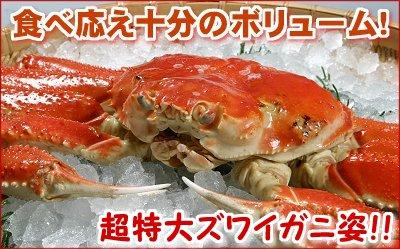 カット生ズワイガニ詰め合わせ生冷凍・1.2kg