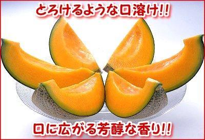 【産直】夕張メロン・優品<br>約1.6㎏×3玉