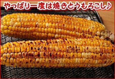 【産直】朝採りとうもろこしセット<br>(黄色5本・白5本)