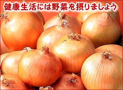 【産直】玉ねぎ 10kg