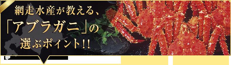「アブラガニ」の選ぶポイント!!