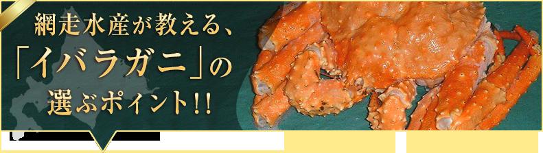 「イバラガニ」の選ぶポイント!!