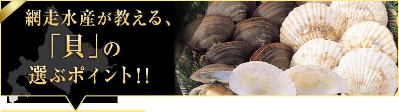 「貝類」の選ぶポイント!!
