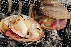 ほっき貝のシンプル料理