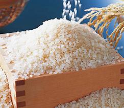 北海道米が選ばれる理由