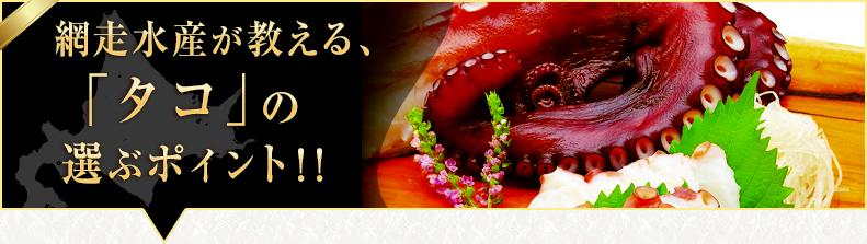 「タコ」の選ぶポイント!!