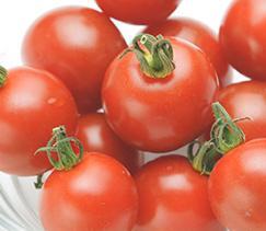 美味しいトマトの見分け方