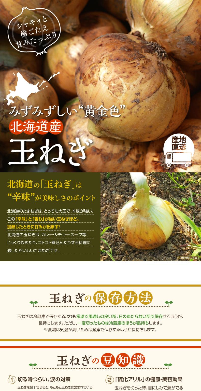 北海道の玉ねぎ