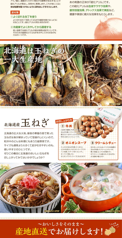北海道は、玉ねぎの日本一の生産地
