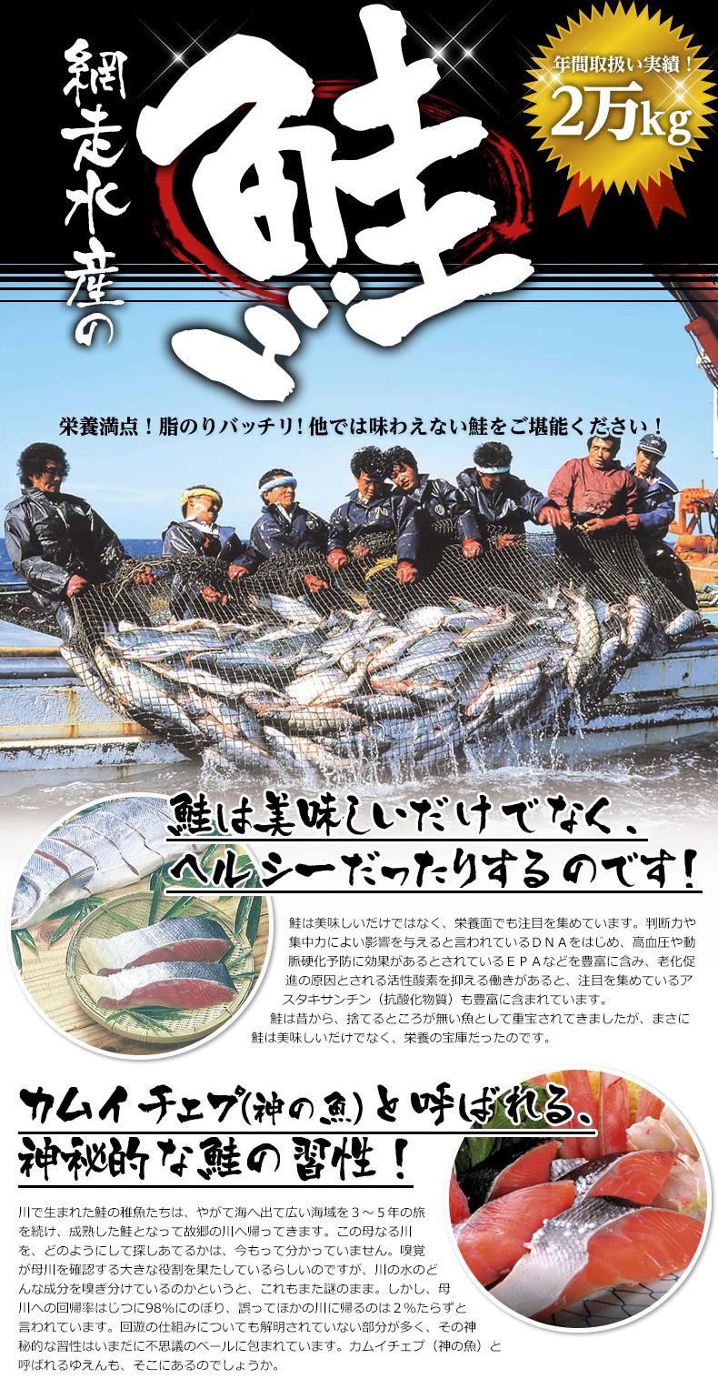 網走水産の鮭 栄養満点!脂のりバッチリ!他では味わえない鮭をご堪能ください!