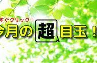 残暑見舞応援フェア開催中!!