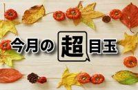 秋の味覚大集合!秋の大収穫祭開催中♪
